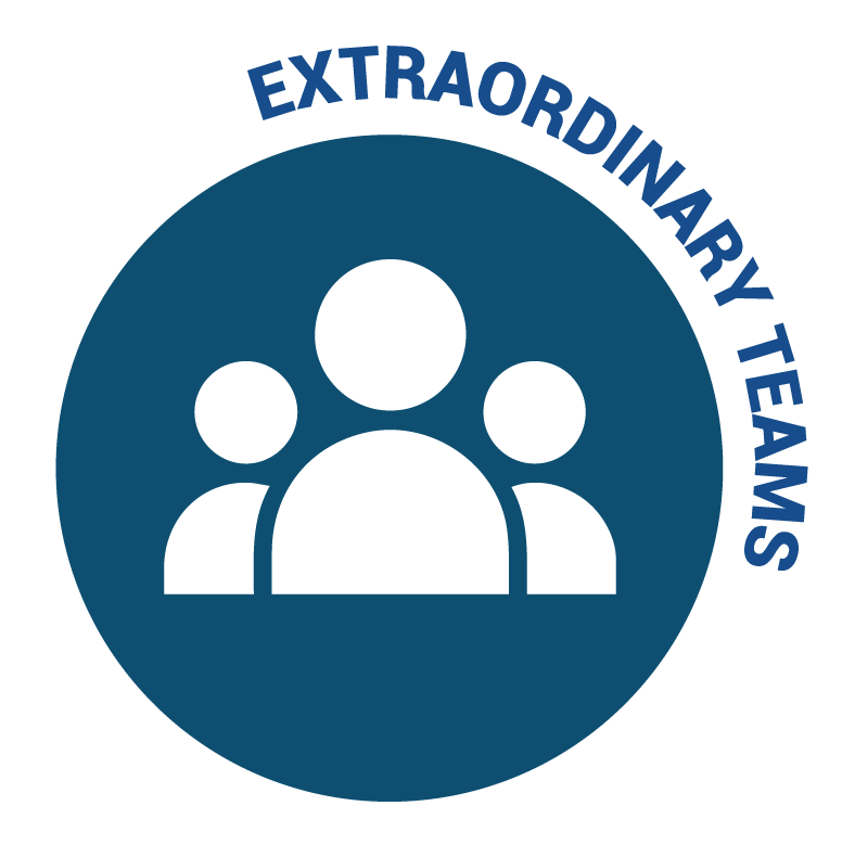 Extraordinary Teams - Niagara Health Area of Foucs